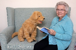 The value of animatronic robot pets for residents of Care